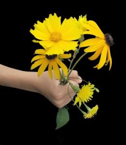Liebe im Tierreich: Bringt er Blumen, ist er untreu