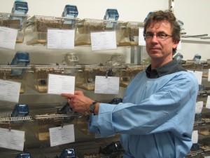 Matthias Schmidt in der Versuchstierhaltung. Er kümmert sich darum, dass es den Tieren gut geht. Foto: Sarah Müller