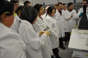 Schüler beobachten die Ergebnisse des Experiments