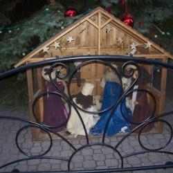 Die Krippe am Fuße des großen Weihnachtsbaums