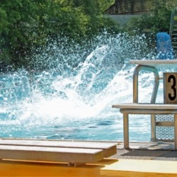 Auf den Bock und ab ins Wasser! Foto: pixelio/Uschi Dreiucker.