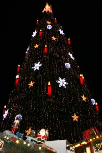 Vier Wochen Aufbauzeit sind nötig, damit aus den 1.700 einzelnen Rotfichten der Dortmunder Weihnachtsbaum entsteht. Foto: Anna Hückelheim