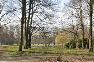 "Die ""grüne Lunge"" in der Dortmunder Nordstadt: der Fredenbaumpark. Foto: Cathérine Wenk"