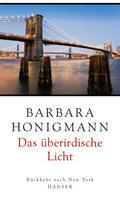 """Cover """"Das überirdische Licht"""""""