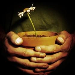 Die Angst vor der Beschäftigung mit dem eigenen Tod schreckt viele Menschen vor der Organspende ab. Foto: spacejunkie / photocase.com