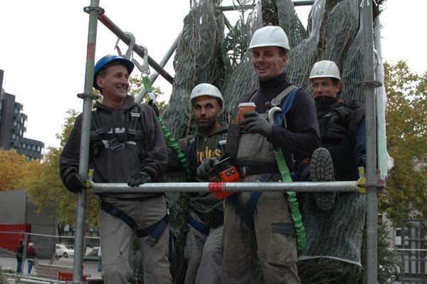 Peter Buchta (2.v.r.) und seine Kollegen montieren die Bäume in luftiger Höhe. Das dürfen sie nur, wenn sie gut gesichert sind. Foto: Haika Hartmann