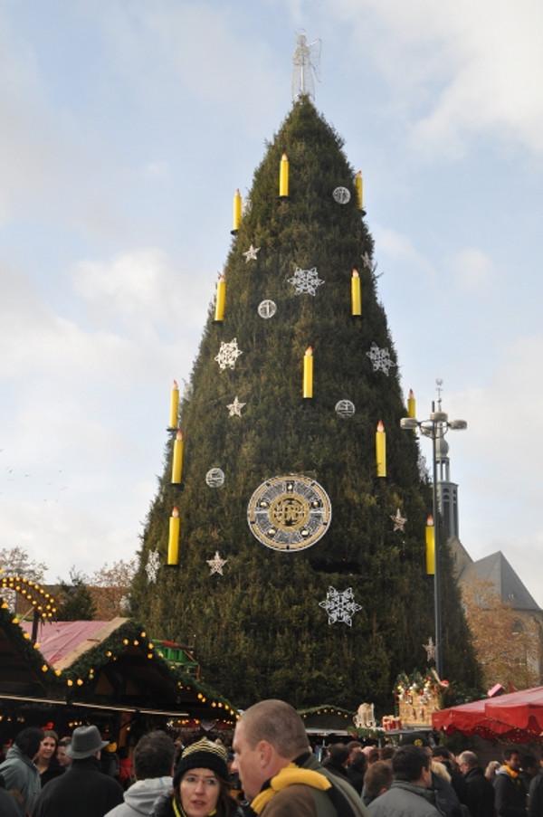 Bvb Weihnachtsbaum.Dortmund Im Derbyfieber Pflichtlektüre