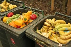 Frisches Obst und Gemüse lauert in vielen Mülleimern. Foto: Schnappschuss / pixelio.de
