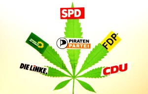 Ein Cannabis-Blatt, viele Meinungen: Die Parteien haben in der Frage nach einer Legalisierung der Droge unterschiedliche Meinungen. Foto: Daniel Moßbrucker