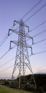 Die neuen Stromtrassen sind vielen Menschen ein Dorn im Auge. Foto: Yummifruitbat