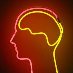 Wenn die Musik unterbricht, denkt unser Gehirn das Lied automatisch weiter. Das haben Wissenschaftler vom Dartmouth College herausgefunden. Foto: flickr.com/dierkschaefer