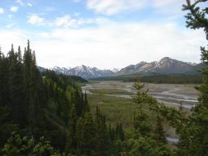 Die Wildnis von Alaska wurde für McCandless zur tödlichen Falle. Foto: Richard/pixelio.de