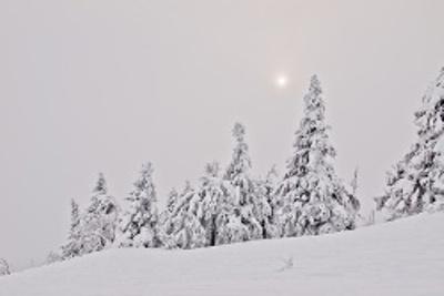 Tomte hinterlässt Fußspuren im Schnee. Teaserbild: Hannah Biermann, Foto: Martin Benhofer/pixelio.de