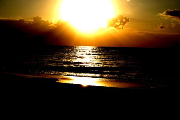In ihrer aktiven Phase könnte die Sonne eine große Gefahr darstellen. Foto: CarolinaJG/morguefile.com