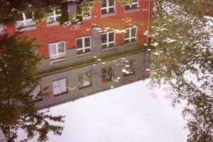 Konferenzen werden auch gerne einmal am Teich im Innenhof der GLS-Bank abgehalten. Foto: Niklas Dummer