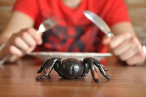 Spinnen auf dem Esstisch? Es würde sich lohnen! Fotos und Teaserbild: Gordon Wüllner.