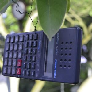 Taschenrechner an ungewöhnlichem Ort: Der Schrottbaum.