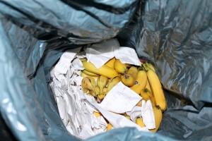 Diese Bananen sind noch vollkommen in Ordnung. Trotzdem sind sie im Müll gelandet. (Foto: Teresa Bechtold)