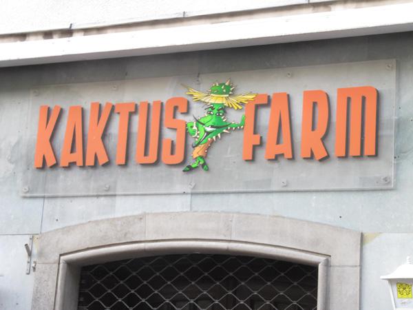 Kaktus-Farm an der Wilhelmstraße