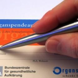 Einige Forscher sehen im 3D-Druck eine neue Form der Organspende. (Foto: Thorben Wengert/pixelio.de)