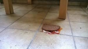 … und es fällt immer auf die beschmierte Seite. Essen sollte man dieses Butterbrot eh nicht mehr - denn über die glatte Oberfläche der Fliesen können besonders viele Bakterien am Brot haften. Foto: Henrik Veldhoen