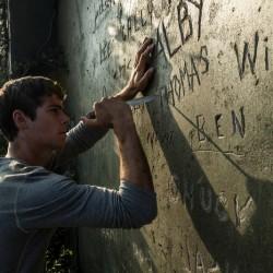 Thomas ritzt seinen Namen zu den zahlreichen anderen. Er gehört nun dazu. Bild: 20th Century Fox