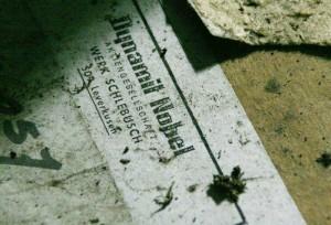 Unter anderem der Verkauf von Dynamit machte Alfred Nobel reich. Foto: flickr.com / Wout