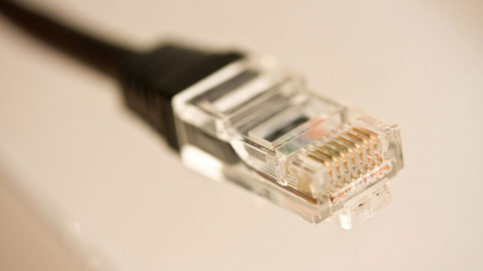 Nahaufnahme eines Netzwerkkabels.