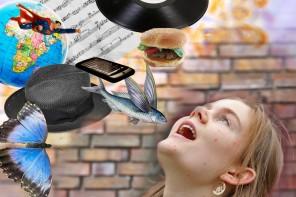 Der Breitmaulfrosch: Festival ohne Bedeutung