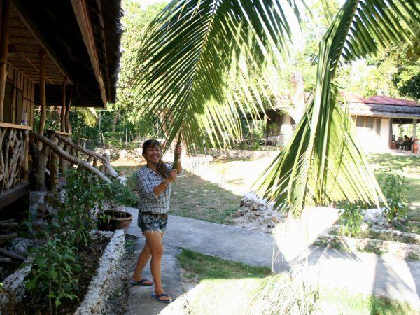 Chell zieht einen Palmwedel zu sich
