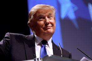 US-Amerikaner über die Präsidentschaftswahl: Trumps Erfolg war reiner Zufall