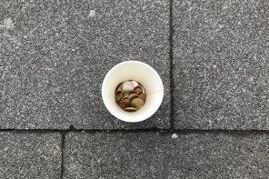 Auf dem Foto ist ein Kaffeebecher von oben zu sehen, in dem geldmünzen liegen. Der Becher steht auf einer Straße